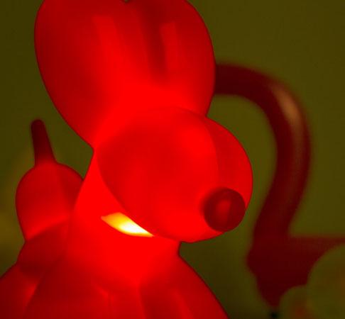 Balloon Dog Light at Firebox