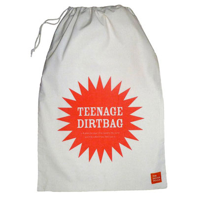 Teenage Dirtbag Laundry Bag